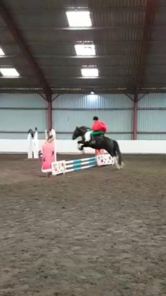 Flying Tomato 29.10.17